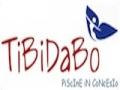 logo tibidabo 2014 20.03.33